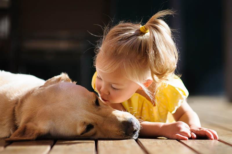 blondes kleines Mädchen küsst ihren Hund auf dem Boden