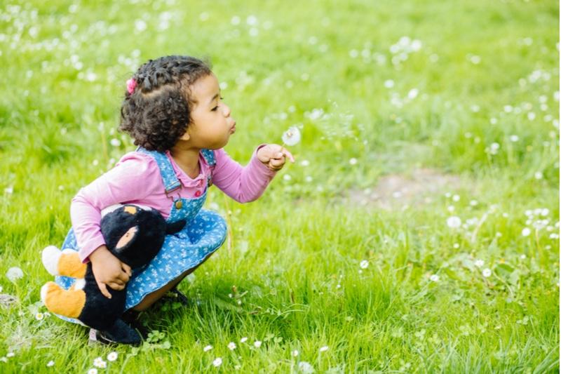 süßes schwarzes Mädchen des Kleinkindes, das eine Löwenzahnblume bläst