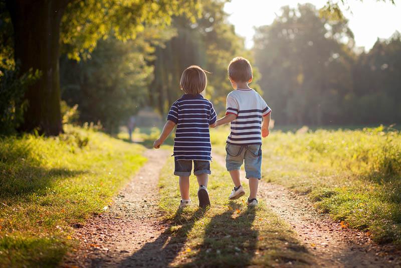 Brüder gehen im Park spazieren