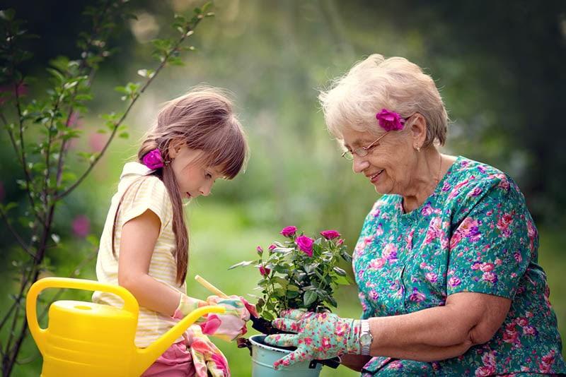 Glückliche Großmutter mit ihrer Enkelin bei der Arbeit im Garten