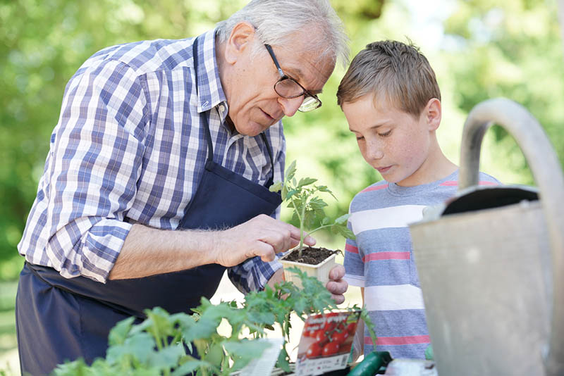 Großvater mit Enkel bei der gemeinsamen Gartenarbeit