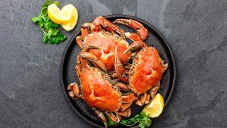 Gekochte Krabben auf schwarzem Teller, serviert mit Zitronen