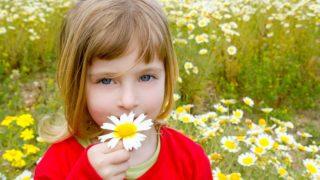 blondes kleines Mädchen riecht Blumen in der Natur