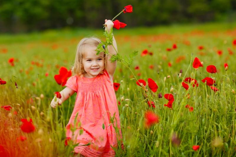 Schönes kleines Kindermädchen im Kleid Blumenpflücken im Mohnfeld