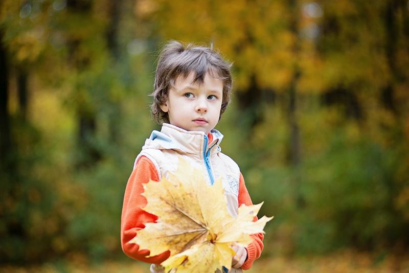 kleiner Junge, der getrocknete Blätter im Park hält