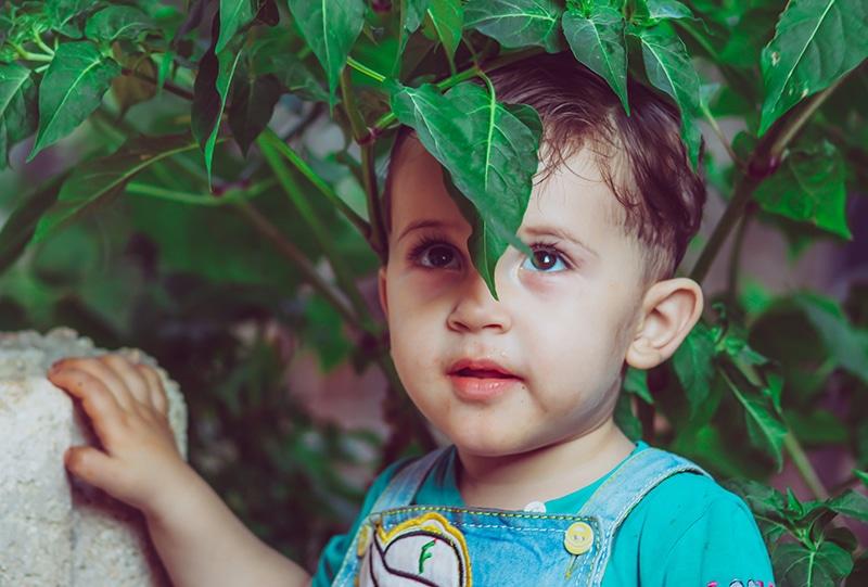 kleiner Junge, der unter dem Baum steht und aufschaut